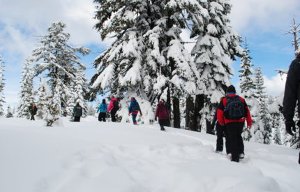 Group of people snowshoeing at Crater Lake.
